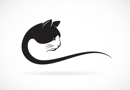 image of an cat face design on white background, cat head for your design Ilustracja