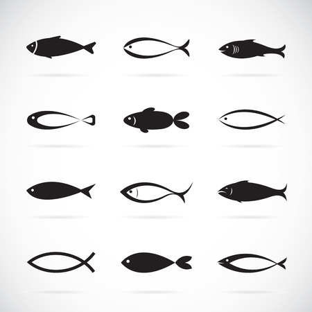 Set of fish icons on white background, fish icons for your design. Stock Illustratie
