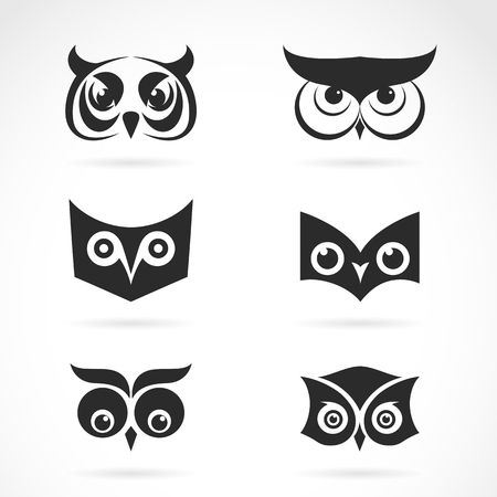 tattoo face: image of an owl face design on white background. owl face for your design. Illustration