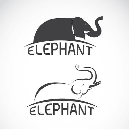 siluetas de elefantes: imágenes vectoriales de diseño del elefante sobre un fondo blanco, elefante del vector para su diseño.