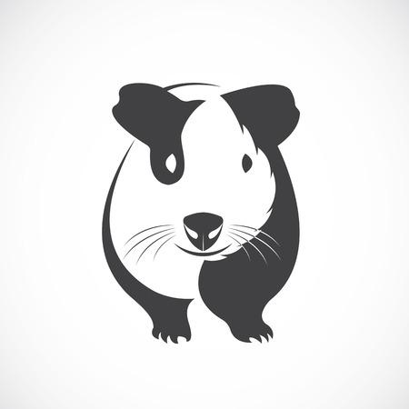 Vector of guinea pig design on white background.