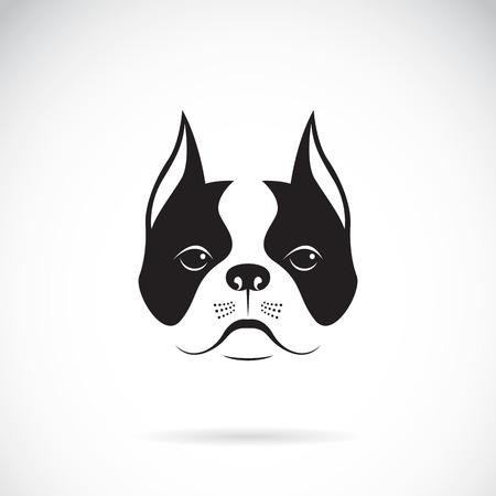 Vectorial de una cara de perro en un fondo blanco. Buldog Ilustración de vector