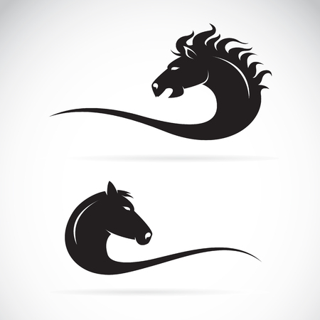 Vector of horse head design on a white background.