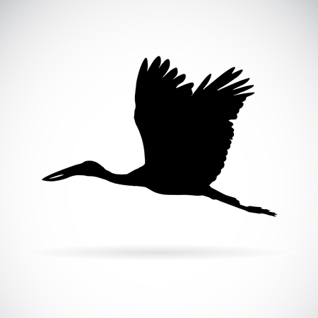 cranes: Vector silhouettes of stork flight on white background.