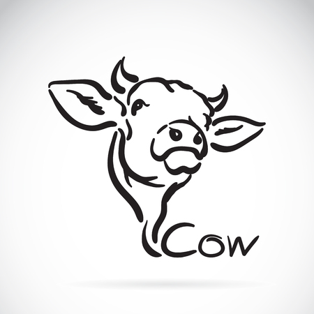 Vector of a cow on white background. Vettoriali