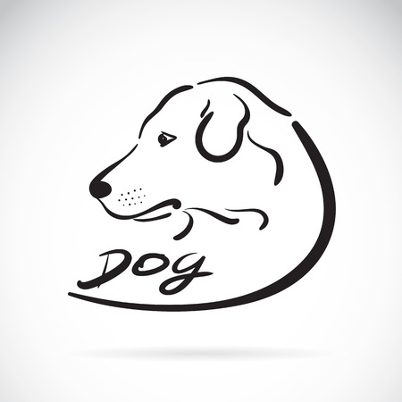 brown and black dog face: Vector of a dog head on white background. Dog labrador Icon
