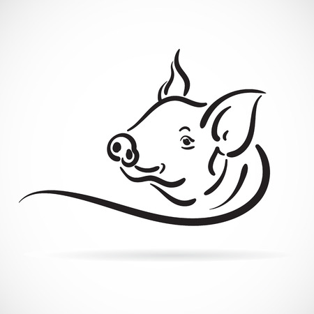 Vector of a pig on white background.