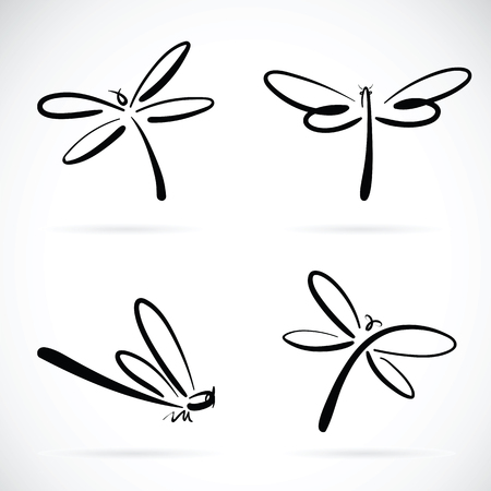 drawing: Vector group of dragonfly sketch on white background