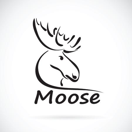 huge antlers: Vector of moose deer head on a white background