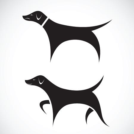 Vector image of vizsla dog standing on white background Illustration