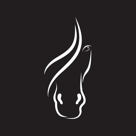 Vector beeld van paard gezicht ontwerp op een zwarte achtergrond.