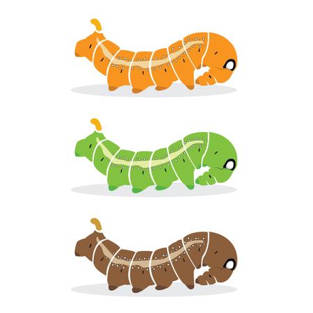 caterpillar: caterpillar on white background.