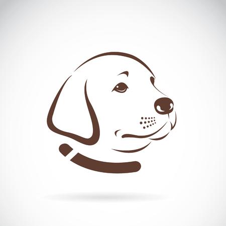 白い背景にラブラドール犬の頭のイメージ  イラスト・ベクター素材