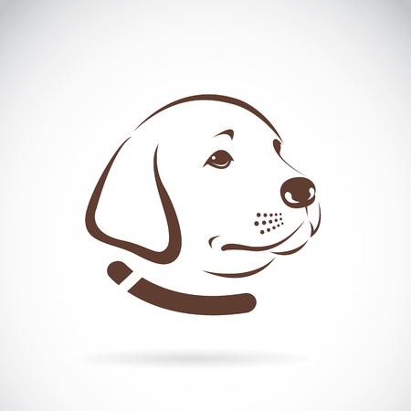 golden retriever puppy: image of an Labrador dogs head on white background Illustration