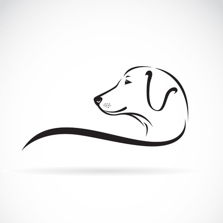 labrador: image of an Labrador dogs head on white background Illustration