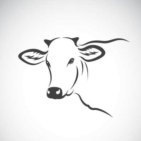 Vector image of a cow head design on white background, Vector cow logo. Farm Animals.