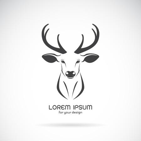 Vector image of a deer head design on white background, Vector deer logo. Wild Animals. 向量圖像