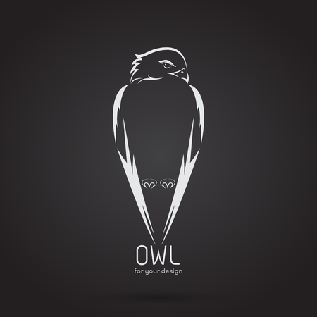 Vector image of a owl design on black background, Vector owl logo. Wild Animals. Illustration