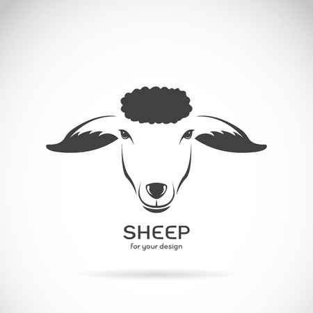 Vector image of a sheep head design on white background, Vector sheep logo. Farm Animals. Illustration