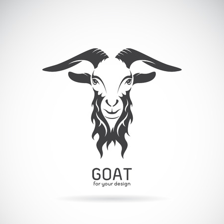 Vector image of a goat head design on white background, Vector goat logo. Wild Animals. Çizim