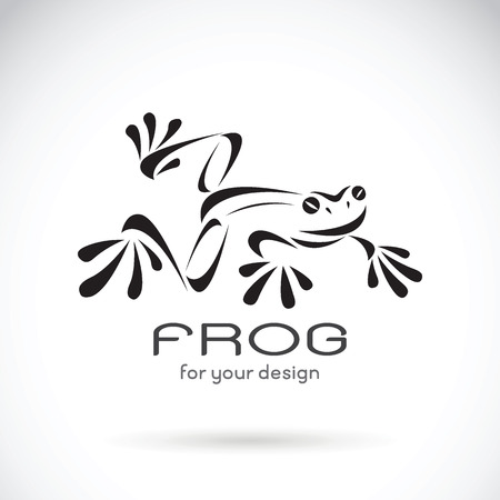 Vector image of a frog design on white background, Frog Logo. Wild Animals. Vector illustration.