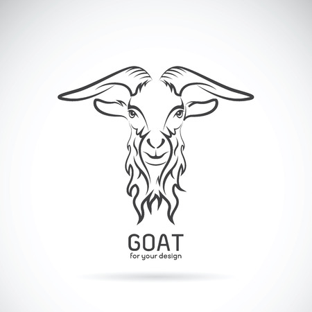 goat head: Vector of a goat head design on white background, Wild Animals.