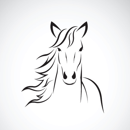 Vector image of a horse head design on white background, Horse Logo. Wild Animals. Vector illustration.