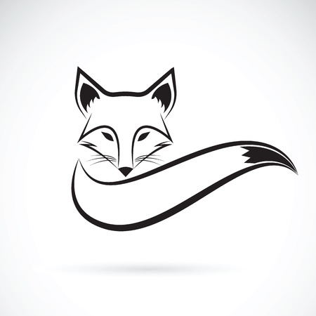tail: Vector image of a fox design on a white background, Wild Animals, Vector illustration.