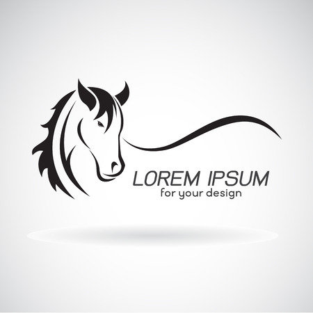 Vector image of a horse head design on white background, Horse Logo. Wild Animals. Vector illustration. Stock Vector - 68287016