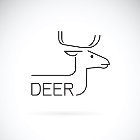 Vector of a deer design on a white background.