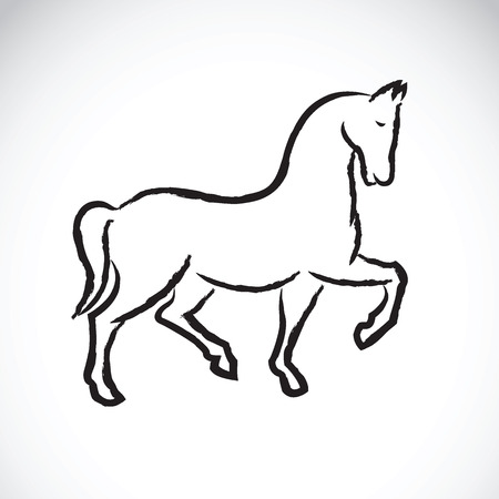 jovial: Vector of a horse on white background.