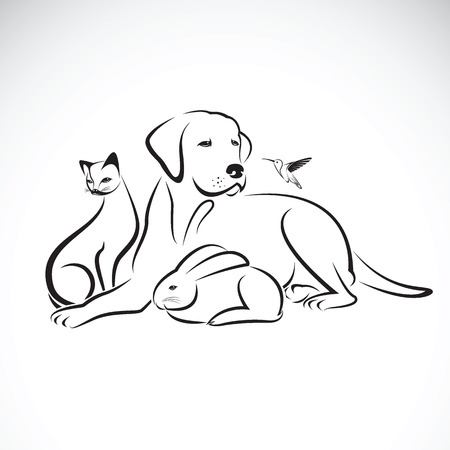 Vector group of pets on white background.  Dog, Cat, Humming bird, Rabbit, Vettoriali