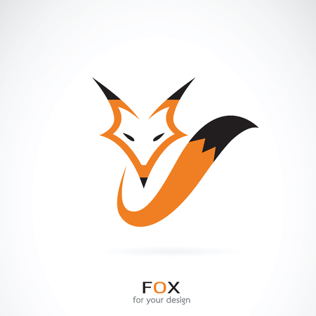 Vector of a fox design on white background. Wild Animals.