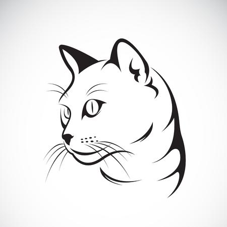 Vector of a cat face design on white background, Vector illustration. Pet Illustration