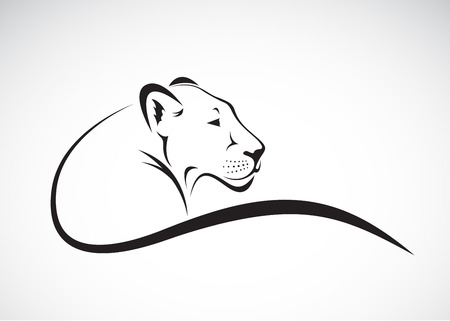 beast: Vector of a lion female design on white background, Wild Animals.
