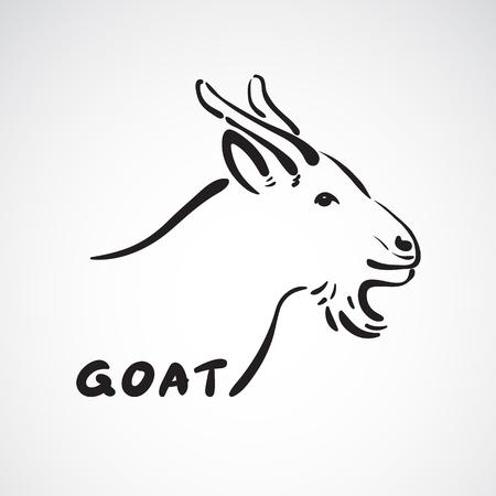 Vector de una cabeza de cabra en el fondo blanco. Animales de granja.