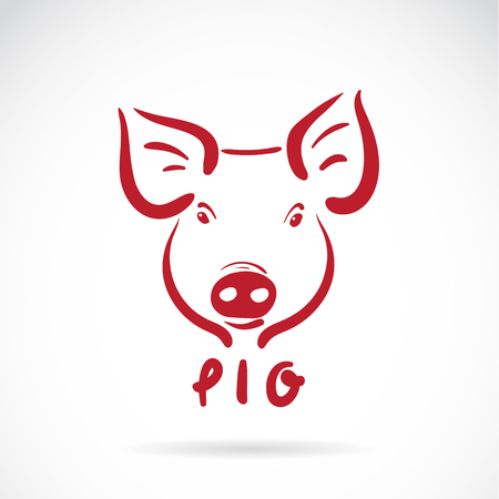 one animal: Vector of a pig head on white background. Farm Animals. Illustration