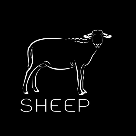 Vector of a sheep on black background. Farm Animals.