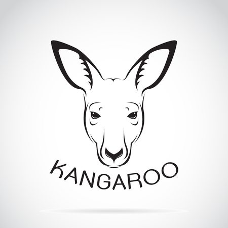 Vecteur d'une tête de kangourou sur fond blanc. Animaux sauvages. Vecteurs