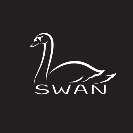 Vector of a swan on black background. Wild Animals.