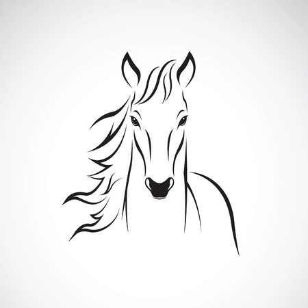 Vector of a horse on white background. Wild Animals.