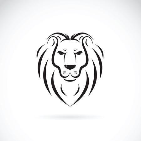 Vector of a lion head design on white background, Wild Animals.