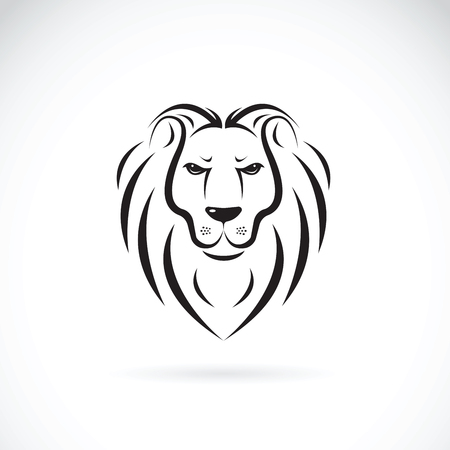 Vector of a lion head design on white background, Wild Animals.