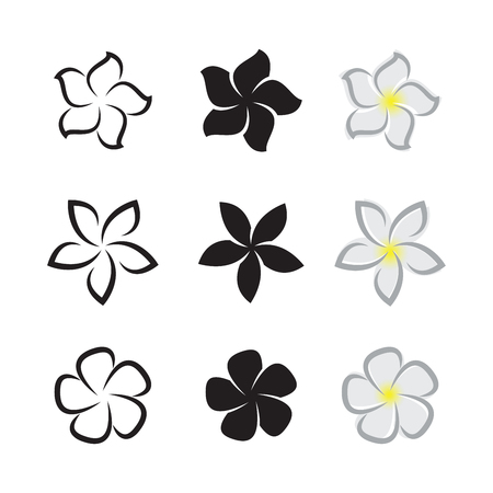 Vector of tropical flowers frangipani (plumeria) on white background.