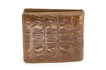 change purse: Image of brown wallet made of crocodile leather isolated on white background.