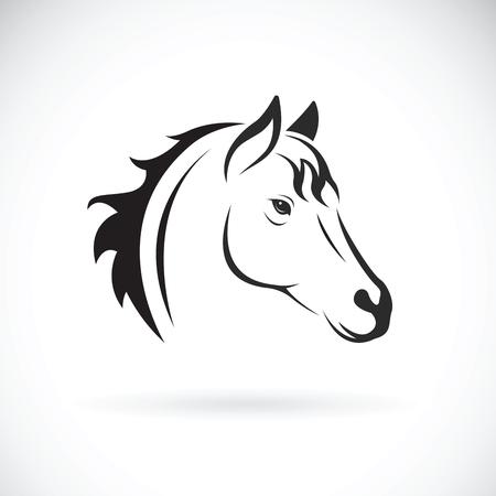 Vector van een paardkop op witte achtergrond. Wild dier