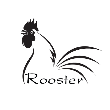 Vector of an rooster disign on white background. Farm Animals. Illustration