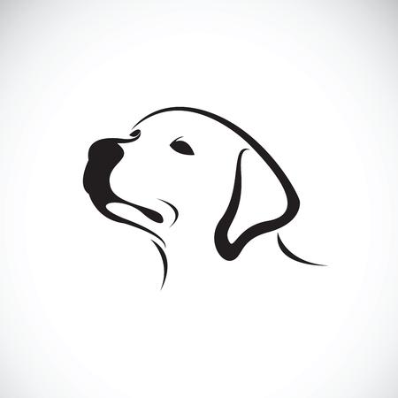 labrador: Vector of a dog head(Labrador Retriever) on white background, Pet. Animals.