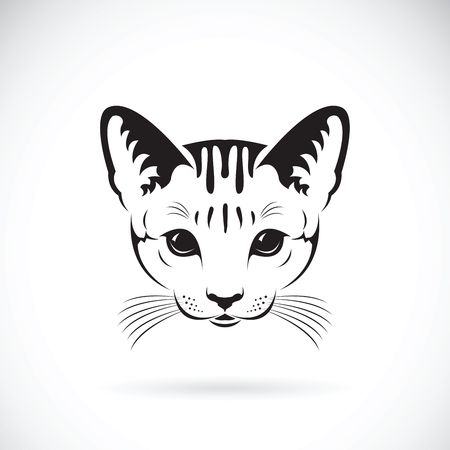 Vector de una cara de gato sobre fondo blanco, mascota. Animales. Foto de archivo - 82452023