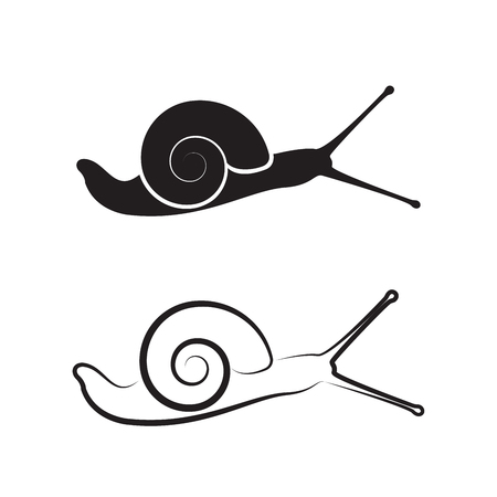 Vector of a snail on white background. Reptile Animals.